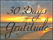Teaching Good Things 30 Days of Gratitude
